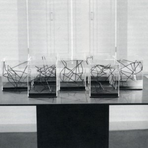 Lorrraine Bénic, Spatiogrammes de 1 à 7, 1990. Techniques mixtes. 18 x 18 x 21 cm. Photo : Richard Max Tremblay.