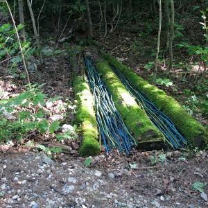 Odette Théberge, Parure, 2011, Installation in situ, bois, branches, acrylique, 1,5m X 3m X 15 cm . Photo: O.Théberge