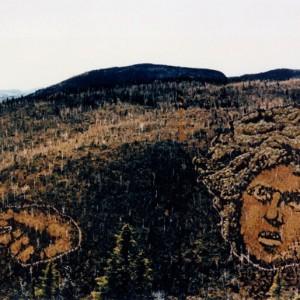 Denys Tremblay (Denys Premier),  Saint-Jean-du-Millénaire,  1992. Plantations et coupes sélectives de divers arbres. 1000 m.  Photo: Paul Cimon.